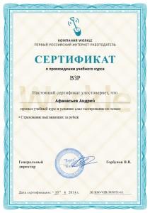 Сертификат ВЗР